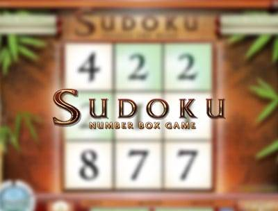Sudoku Number Box Game